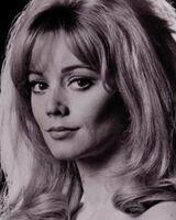Elaine Taylor (1)