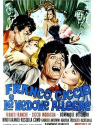 Franco, Ciccio e le vedove allegre