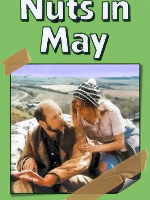 Les Dingues du mois de mai
