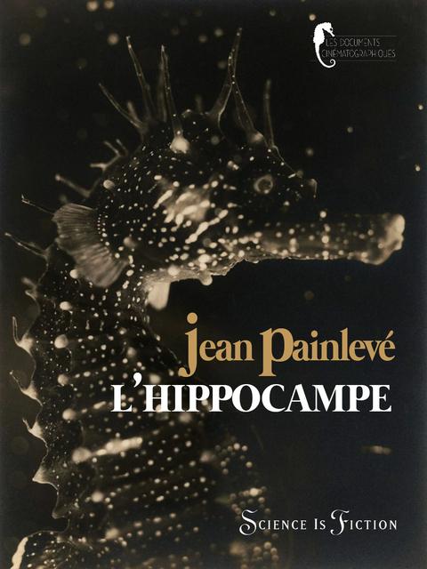 L'hippocampe, ou 'Cheval marin'