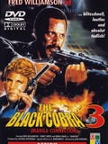 The Black Cobra 3