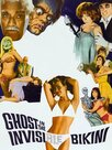 The Ghost in the Invisible Bikini