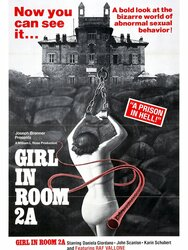 The Girl in Room 2A
