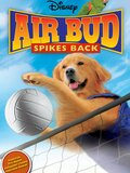 Air Bud, l'as du volley-ball