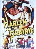 Harlem on the Prairie