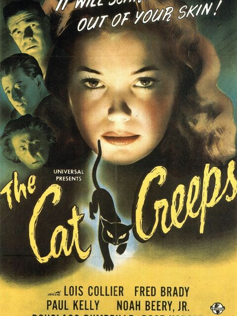 The Cat Creeps