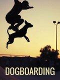 Dogboarding