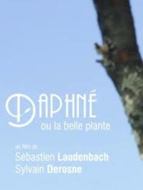 Daphné ou la belle plante