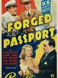 Forged Passport