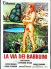 La via dei babbuini