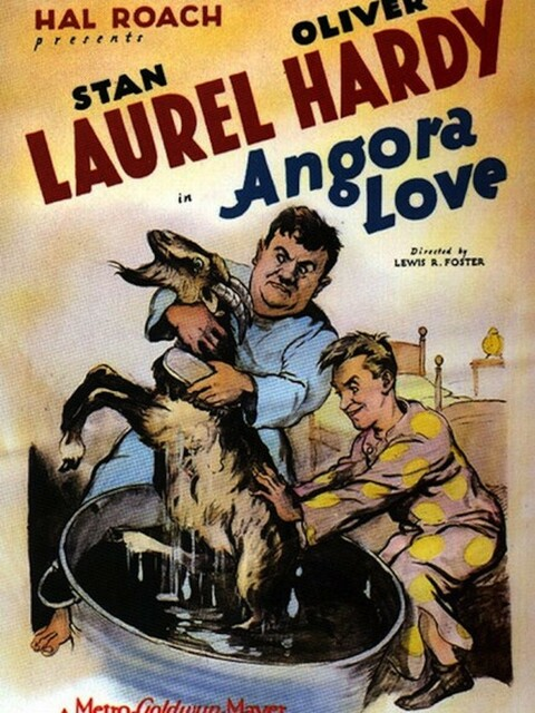 Laurel et Hardy - Entre la chèvre et le chou
