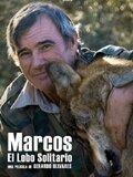 Marcos, el lobo solitario
