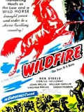 Wildfire