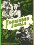 Forbidden Jungle