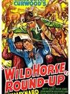 Wild Horse Round-Up