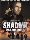 Les Guerriers de l'ombre 2