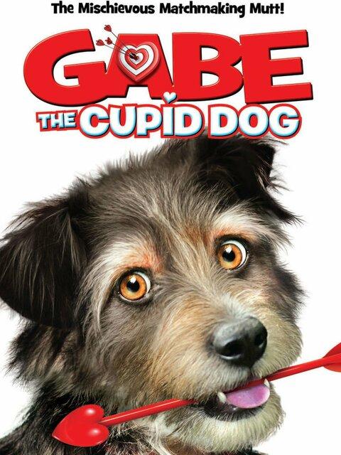 Gabe : Un amour de chien