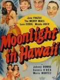 Moonlight in Hawaii