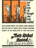 Black Rebels