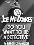 So You Want to Be a Detective