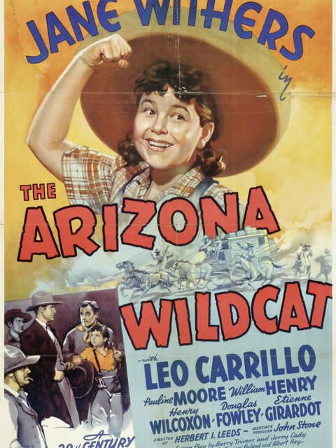 The Arizona Wildcat