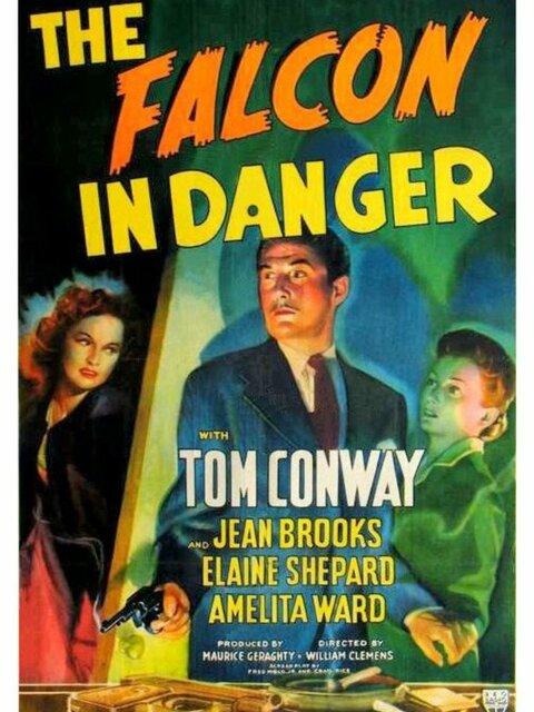 The Falcon in Danger