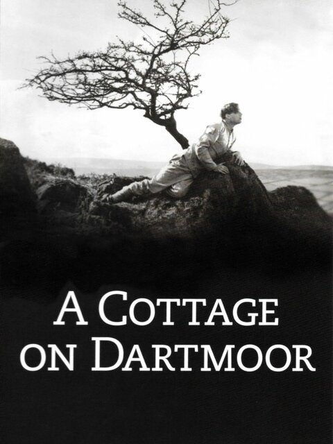 Un cottage dans le Dartmoor
