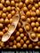 Argentine, le soja de la faim