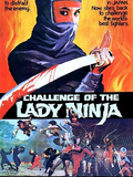 Challenge of the Lady Ninja