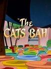 Un chat se bat dans la casse-bah