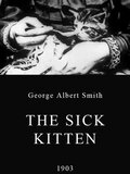 The Sick Kitten