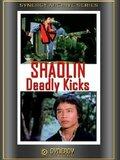 Shaolin Deadly Kicks