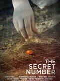 The Secret Number