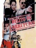 Delito de corrupción
