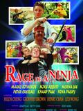Rage of a Ninja