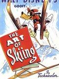 Leçon de Ski