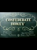 Confederate Honey