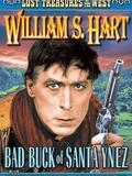 Bad Buck of Santa Ynez