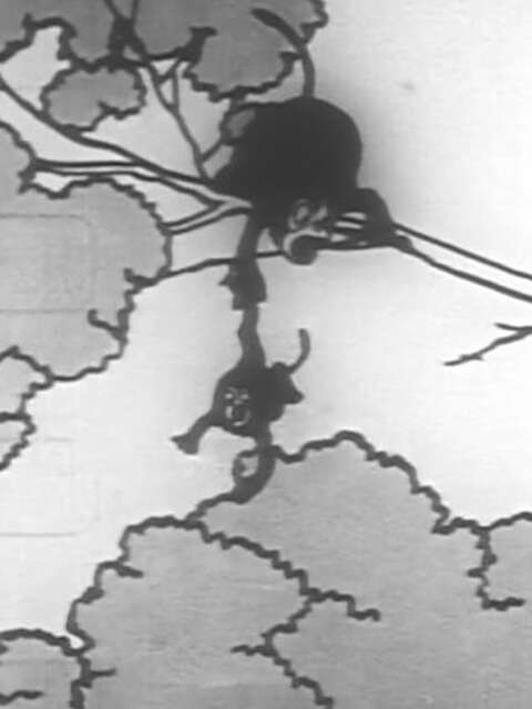 Masamune, le sabre des singes