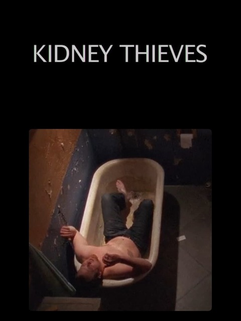 Kidney Thieves