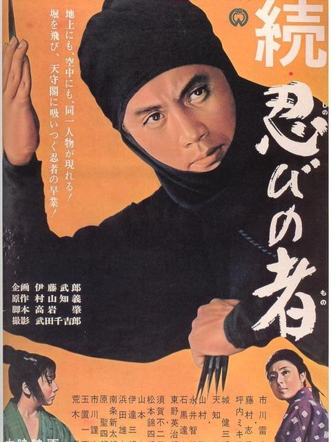 Le Secret du ninja 2 : Vengeance