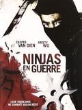 Ninjas en guerre
