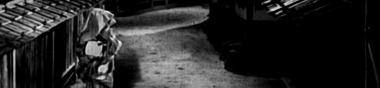 """Lire (et regarder) """"Fantômes du Cinéma japonais. Les métamorphoses de Sadako"""""""