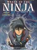 La Colère du Ninja : Yotoden
