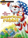American Rabbit