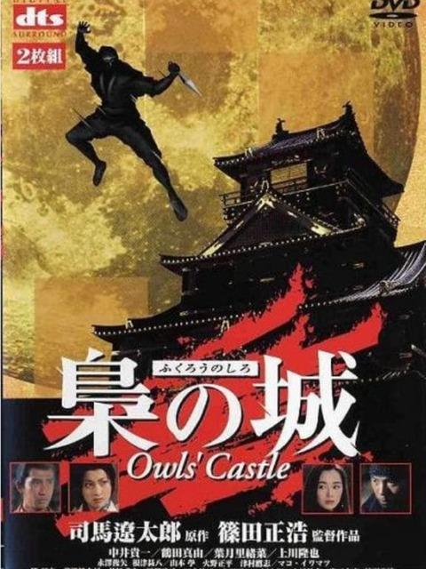Owls' Castle