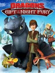 Dragons des fêtes : Le cadeau du Furie Nocturne