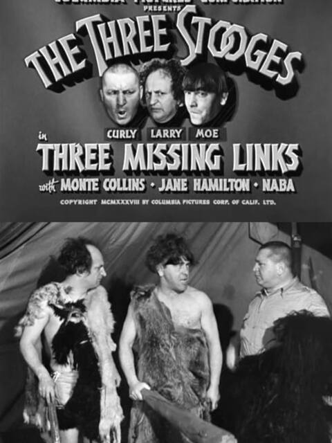 Three Missing Links