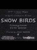 Snow Birds