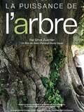 La Puissance de l'arbre avec Ernst Zürcher